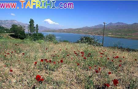 عکس هایی از دریاچه طالقان