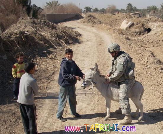 [عکس: 28_Pic_Funny_Seri3_www_Tafrihi_com.jpg]